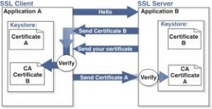Open SSL for Salesforce - Certificates and Authenitication